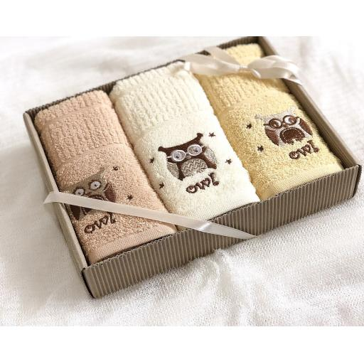 Rigg's Owls Boxed Kitchen Towels